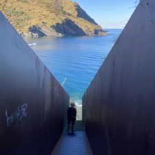 Der Chemin Walter Benjamin